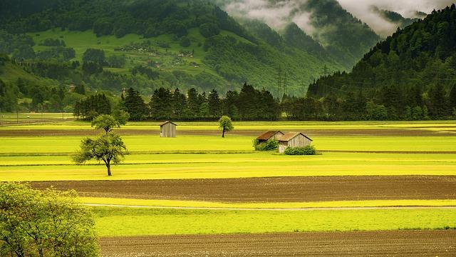 Comment faire pour être résident en Suisse ?